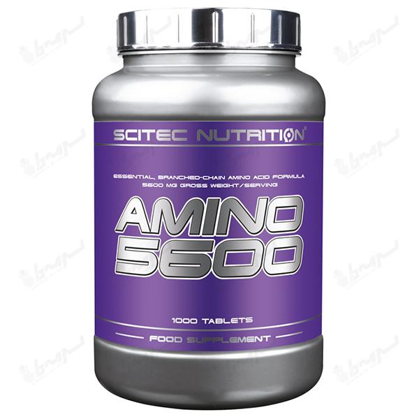 آمینو 5600 سایتک نوتریشن | 1000 عددی