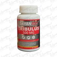 کپسول تریبولوس دایان فارما | 60 عدد